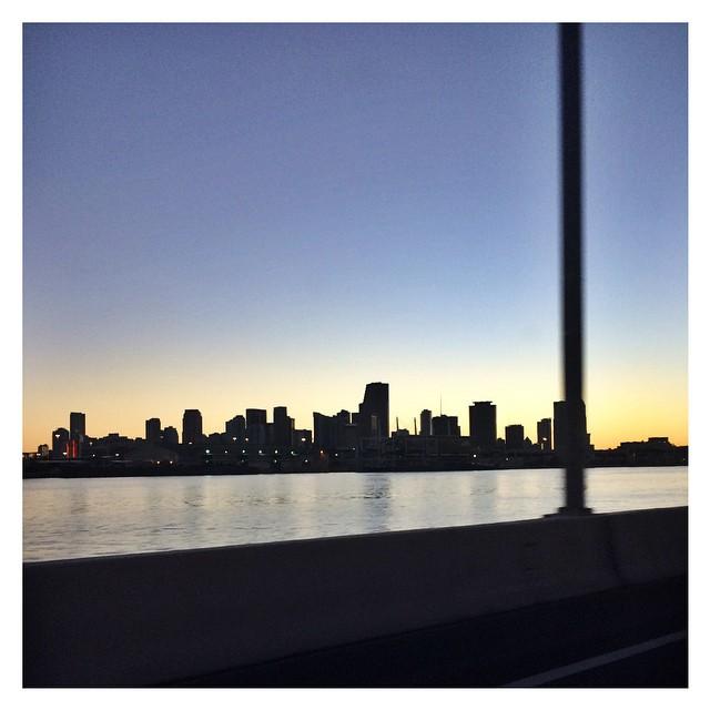 Bye bye Miami ❤️? #miami  #theend #honeymoon  #sandragiorgiowedding  #travel  #instadaily  #instatravel