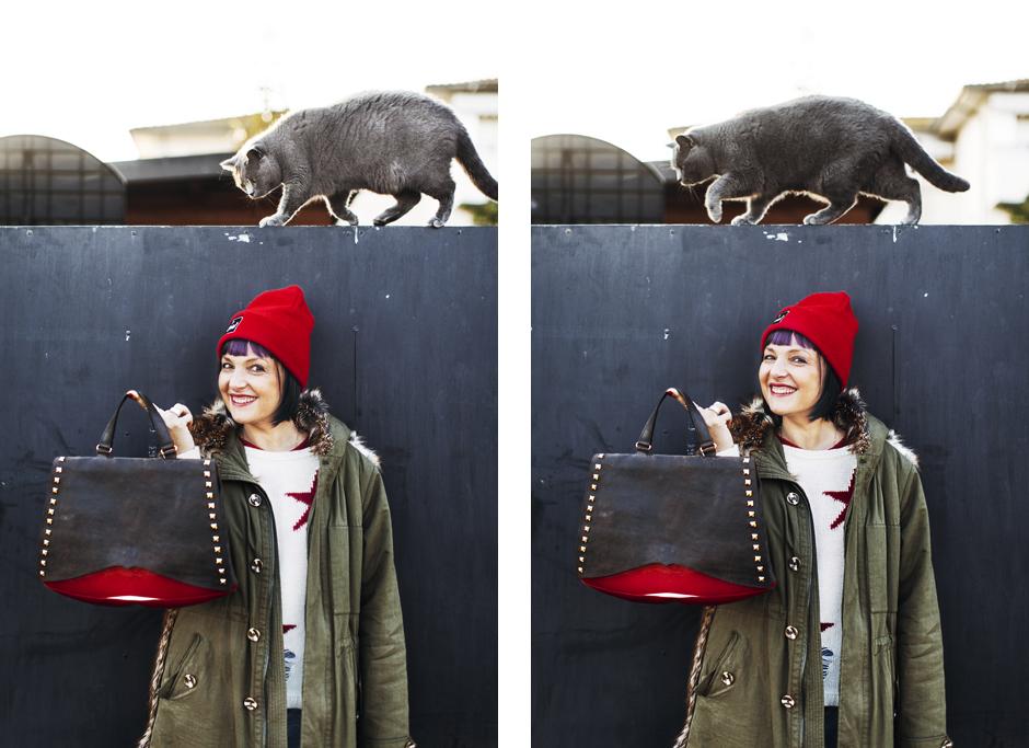 Sandra Bacci-Smilingischic-Twobet-1006, gatto certosino