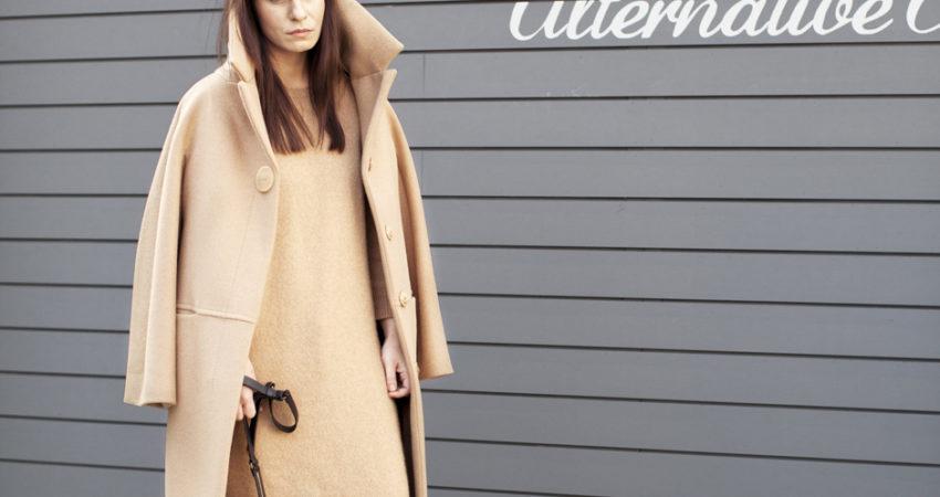 Camel + Camel – Ana Andreea Vasile