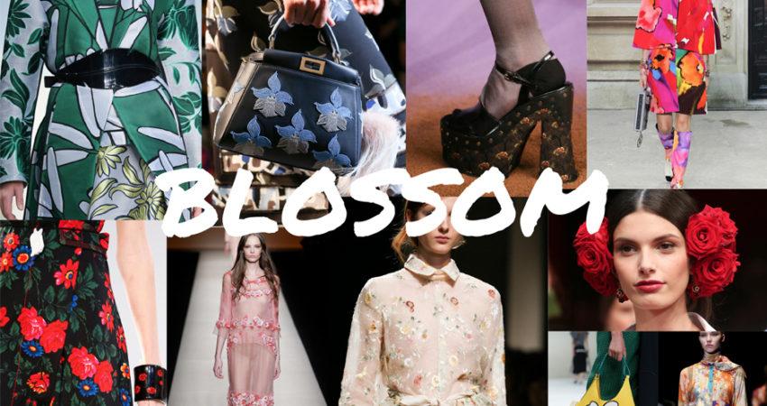 Le scelte di Giulia:  the blossom trend