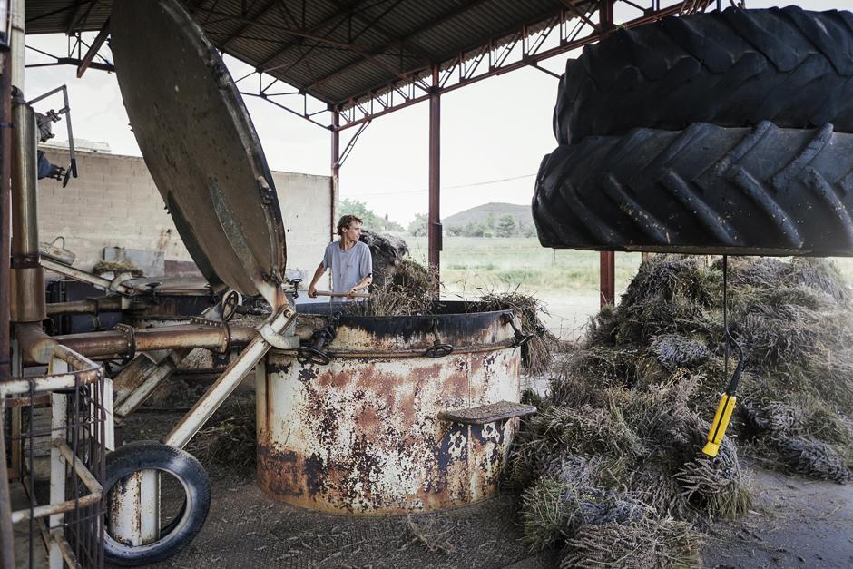 smilingischic, Provenza: alla ricerca della lavanda perduta , distilleria