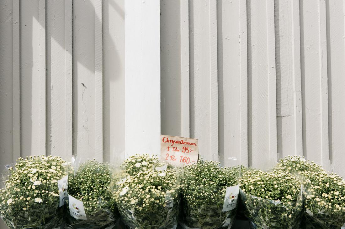 Sigtuna, via principale millenaria Storagatan, dettagli fiori