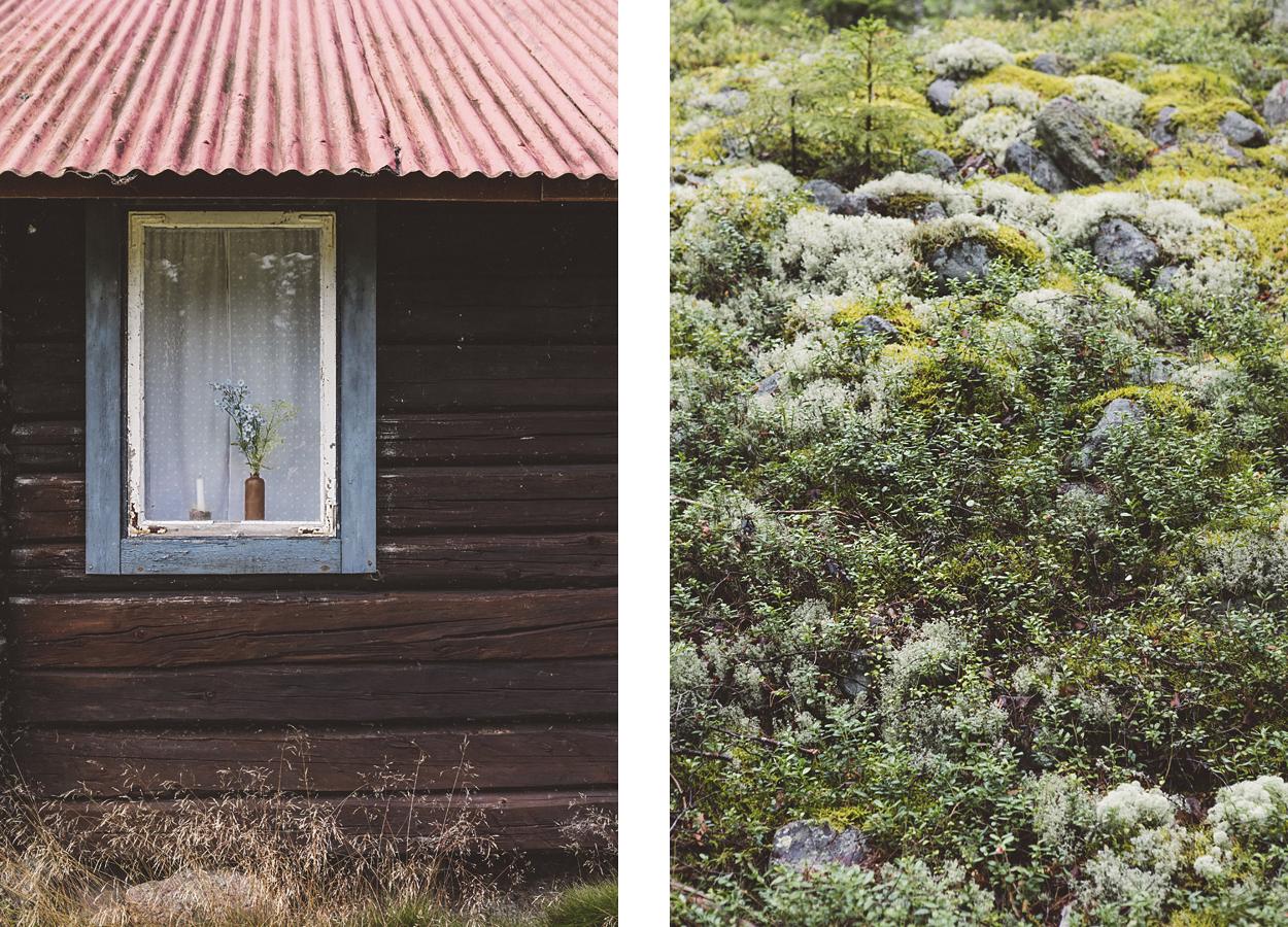 parco nazionale Skuleskogen, dettagli