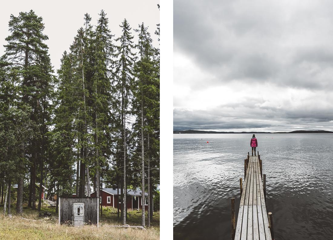 parco nazionale Skuleskogen, passerella in legno