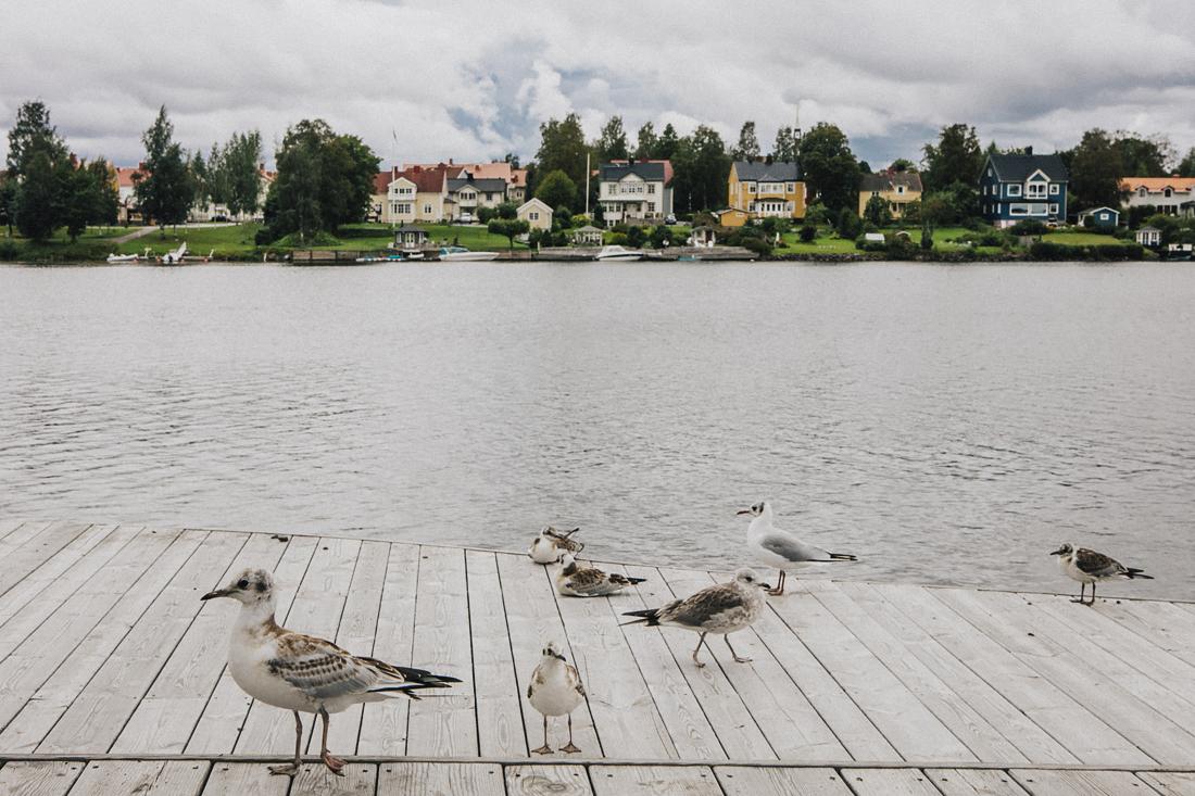 lungo fiume, Cosa-Visitare-In-Svezia:-umea-capitale-europea-della-cultura